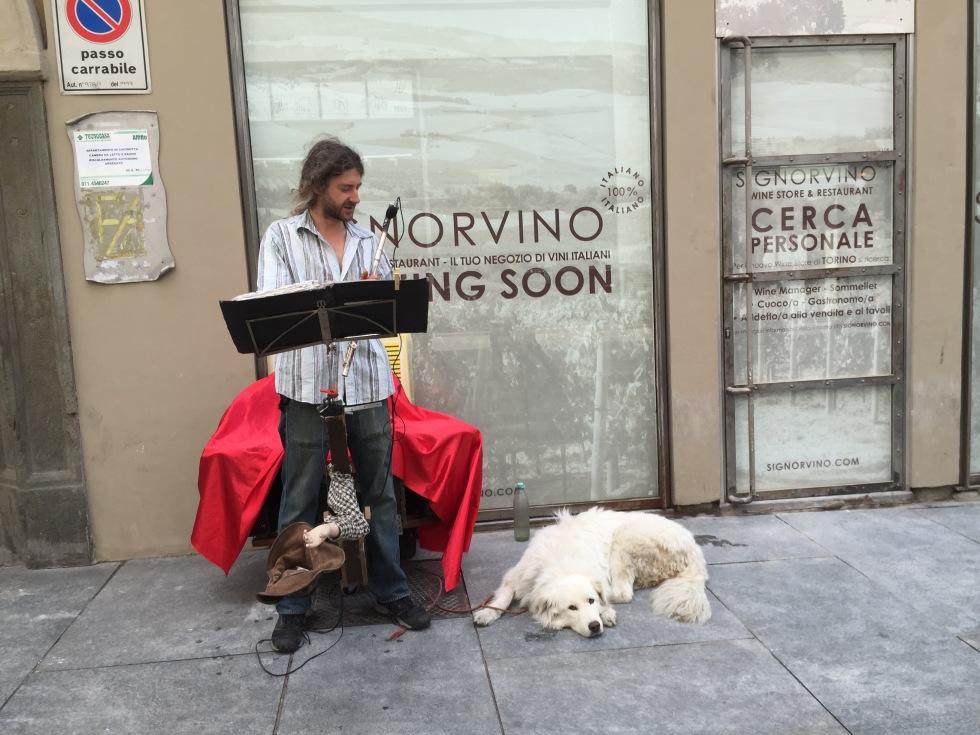 musicista di strada con cane